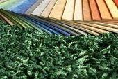 The Samples Of Collection Multicolored Linoleum On Carpet Background