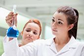 Lab Partners Looking At A Flask