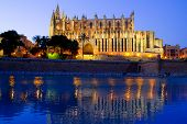 Cathedral of Palma de Mallorca La Seu night view and lake mirrored reflection