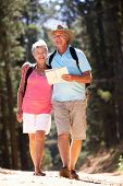 Senior couple reading map on country walk