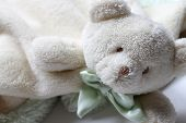 Soft bear lovey