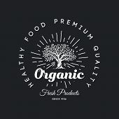 Organic Natural And Healthy Farm Fresh Food Retro Emblem Design. Vintage Round Olive Tree Logo Isola poster