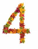The number 4 made from autumn maple tree leaves