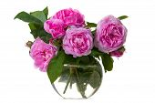 Постер, плакат: Букет из розовых роз