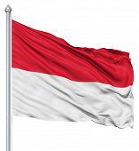 Waving flag of Monaco