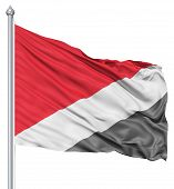 Waving flag of Sealand