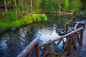 Pond with wooden pier. Beautiful pond with brown wooden pier. Trees around poster