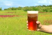 Glass Of Beer In The Hand Against Spring Background