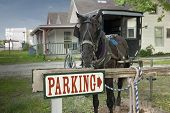 Parking Horse And Buggy