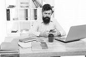 Office Job. Freelance Job. It Developer. Modern Occupation. Guy Bearded Man Brutal Web Developer. So poster