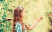Why People Wish On Dandelions. Celebrating Summer. Dandelion Full Symbolism. Folklore Beliefs About  poster