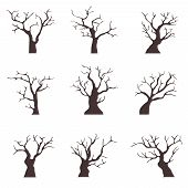 Old Trees Without Leaves. A Collection Of Old Black Trees With Dry Branches. Cartoon Illustration Of poster