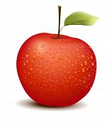 Illustration of photo-like red apple