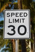 stock photo of infraction law  - A 30 miles per hour speed limit traffic sign encompassed by various vibrant palm trees - JPG