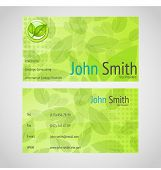 Stylish Green Vector Business Card With Standart 90 X 50 Mm With Leafs