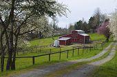 Family Farm In Rural Oregon.