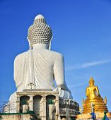 foto of budha  - Posterior view of the Big Budha - JPG