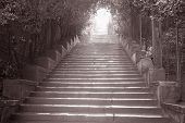 Stairway To Piazza Michelangelo, Florence