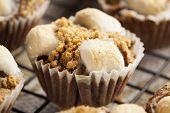 Hot Homemade Smore Cupcakes