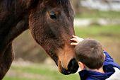 horse boy as if speaking