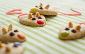 Cookies with mouse shaped and red licorice tail