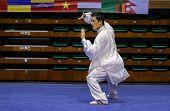 KUALA LUMPUR - NOV 03: Ang Babu Lama of Nepal shows his fighting style in the 'Taiji quan' event at the 12th World Wushu Championship on November 03, 2013 in Kuala Lumpur, Malaysia.