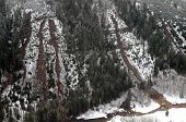 foto of mudslide  - Mudslides scar the hillsides of Washington state following heavy rain on top of snow - JPG