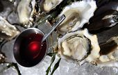 foto of souse  - Opened oysters on ice with red souse - JPG