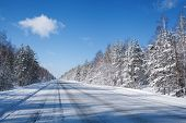 winter road in snow fores