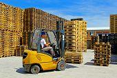 Pallet Forklift
