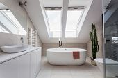 pic of wash-basin  - Urban apartment  - JPG