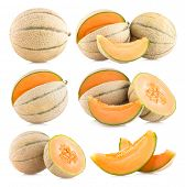 collection of 6 cantaloupe melon images