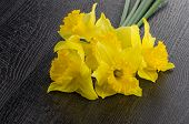 stock photo of jonquils  - Yellow jonquil flowers on dark wooden background.