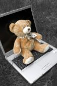 Teddy Sitting On Laptop - Teddy Auf Dem Laptop