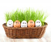 Group Of  Funny Crazy  Smiling  Eggs In  Basket With Grass. Sun Bath.