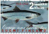 Whitefish Stamp