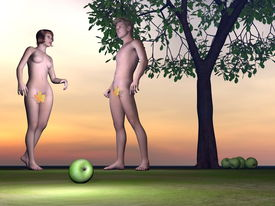 picture of adam eve  - Adam and Eve standing next to an apple with appletree by sunset - JPG