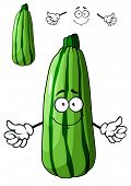 Fresh green cartoon zucchini vegetable