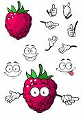 picture of goofy  - Goofy little cartoon raspberry fruit with a happy smile and green stalk isolated on white - JPG