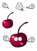 Happy little cherry fruit