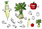 Turnip, radish and pepper vegetables