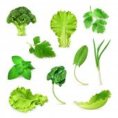 image of food plant  - Green vegetables and herbs set - JPG