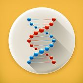 DNA, long shadow vector icon