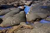 Limpet And Barnacle Covered Rocks Exposed At Low Tide