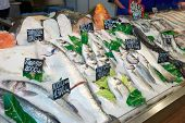 Choic�?�e of fish on a market display, labels contain no trademarks