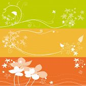 Set of floral flower background