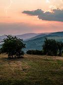 Beautiful Landscape Tuscany Italy