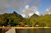 picture of french polynesia  - Scenery at beautiful island of Moorea - JPG