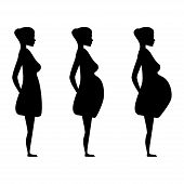 pregnant women in the three trimesters.