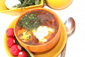 Fresh Soup With Egg And Tomatoes. (2)